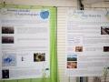 Les deux panneaux expliquant l'intérêt de la pollinisation pour l'homme et les menaces pesant sur les pollinisateurs