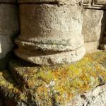 Lichens sur un ancien monument. Tous droits réservés, Marion pour Honua
