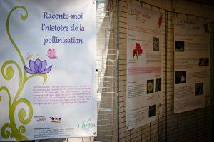 Les trois premiers panneaux de l'exposition