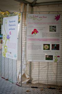 Le panneau titre et le premier panneau expliquant ce qu'est une fleur et ce qu'est la pollinisation