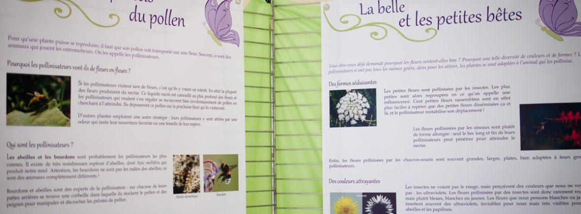 Les deux panneaux expliquant les différents types de pollinisateurs et la manière dont les fleurs les attirent